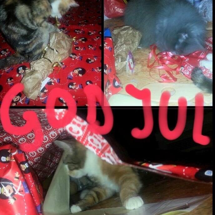 Bilden visar katterna Stollan och Smulan som önskar en God Jul och ett Gott Nytt år!!