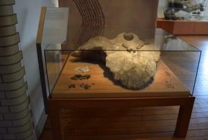 På bilden ser man en monter med glas runt. I montern ligger diverse saker från förhistorisk tid. Det är svårt att veta vad det är för saker eftersom information saknas.